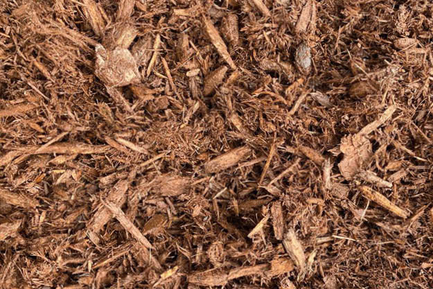 Cherry Mulch